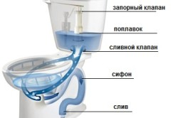 Общая схема устройства унитаза