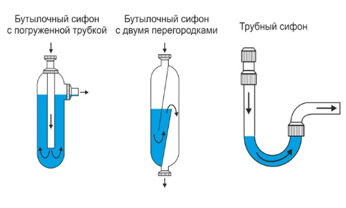 Схема видов сифонов