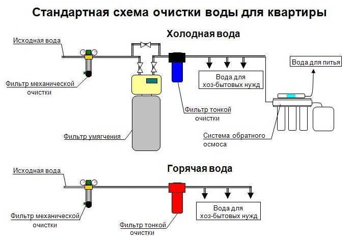 схема очищения от паразитов по семеновой